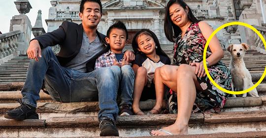 Cão de rua sai sorrindo em sessão de fotos de uma família no México