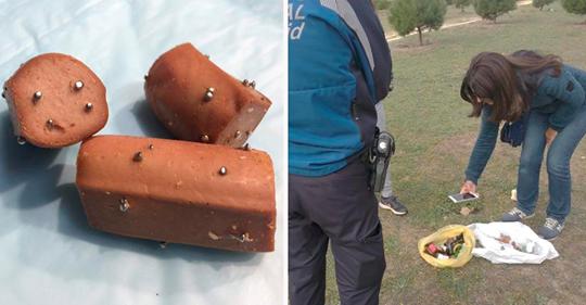 Foi achado salsichas com alfinetes em um parque, todo cuidado é pouco