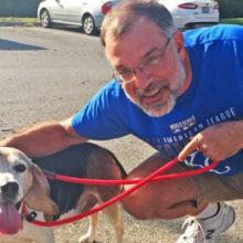 Homem monta refúgio para cães idosos que foram abandonados