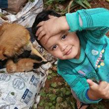 Cão acompanha criança até na consulta médica e comove moradores de Platina