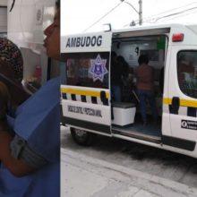 México terá sua primeira ambulância para atender cães atropelados ou maltratados