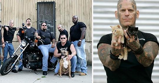 Gangue de motociclista resgatam animais necessitados e de proprietários violentos