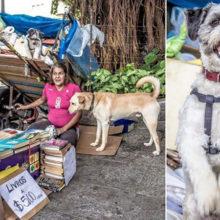 Uma moradora de rua vende livros usados para poder alimentar seus cães