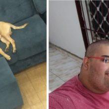 Veja um cachorro que frequentava Casas Bahia é adotado por funcionário