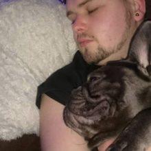 Um cachorro morre 15 minutos depois que seu dono perdeu a luta contra o câncer
