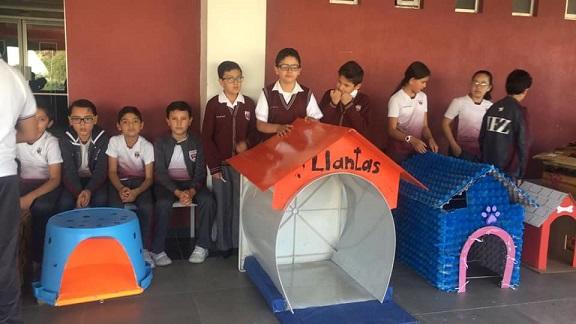 Crianças de uma escola constroem casinhas para cães de rua