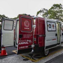 Curitiba ganha ambulância para resgatar cães e gatos em risco nas ruas