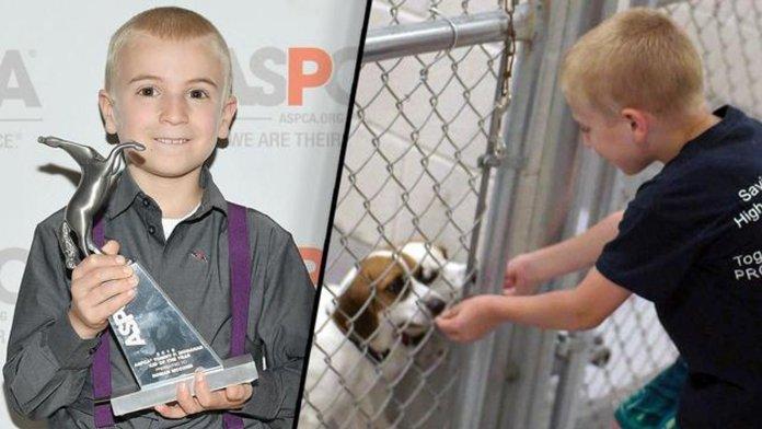 Garoto de apenas 7 anos recebeu prêmio por salvar mais de 1.300 cães
