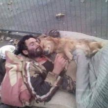 Um morador de rua dorme abraçado com o seu cachorro e foto viraliza na internet