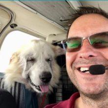 Homem comprou um avião para resgatar cães prestes a serem sacrificados