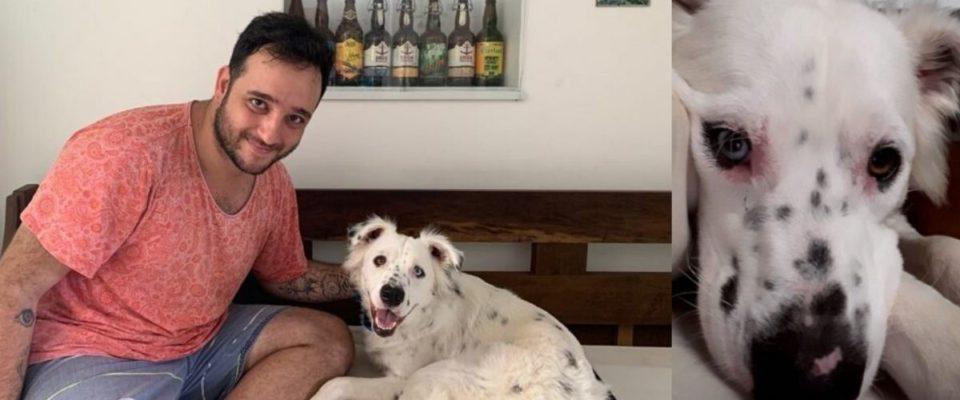 Cachorro surdo era rejeitado, mas foi adotado por dono que também é surdo
