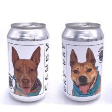 Cervejaria lança campanha e mostra cães para adoção em suas latas de cerveja