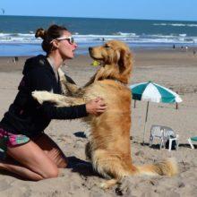 Foi criado uma praia exclusiva para quem quiser levar cães em Mar del Plata