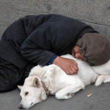 6 grandes razões pelas quais os cachorros são realmente o melhor amigo do homem