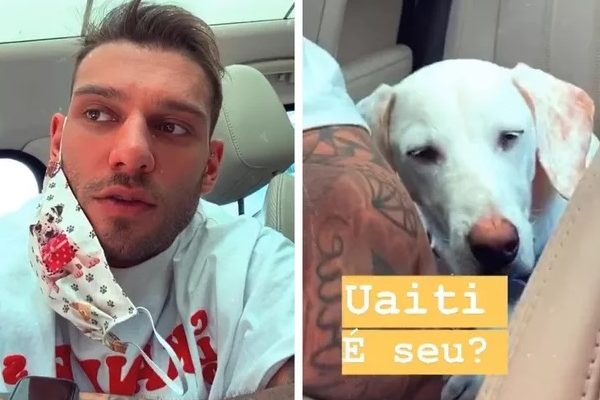 Cantor Lucas Lucco resgata cachorro que encontrou abandonado na rua