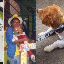 Garoto de 13 anos morre ao salvar o seu cachorro de um incêndio