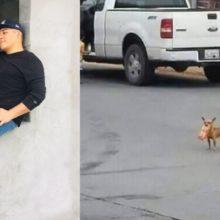 Garoto em quarentena envia seu cão em uma missão para comprar Cheetos e ele entrega