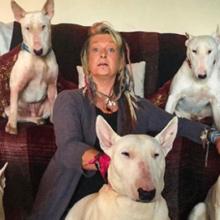 Homem fez sua esposa escolher entre seus cães resgatados e ele – Ela escolheu os cachorros