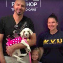 Cachorro é resgatado de abrigo de alta matança e é adotado por uma família