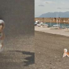 Cão saiu em todas as fotos do Street View perseguindo o carro do Google Maps