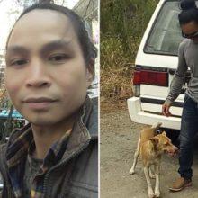 Homem andou por 3 dias com medo de ser um transportador do vírus e um cão leal o acompanhou