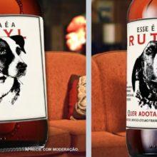 Cervejaria Lagunitas do Brasil incentiva a adoção de cães abandonados em rótulo