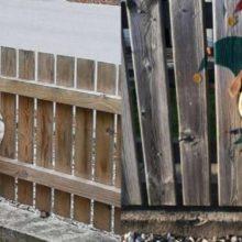 Família pinta a cerca, onde seu cão gosta de colocar a cabeça, o resultado é hilário