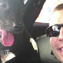 Policial encontra cão amarrado na chuva fria, ele o resgata e se tornam melhores amigos