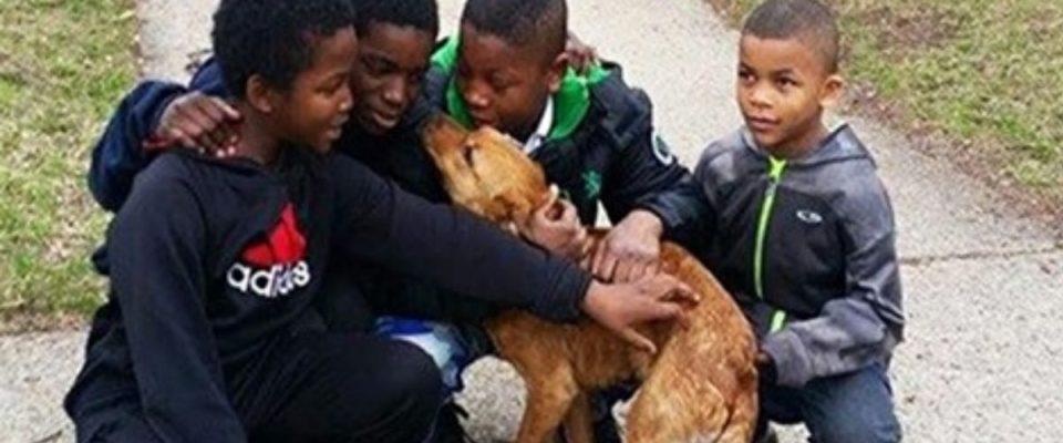 4 meninos resgatam um cão amarrado no fundo de uma casa