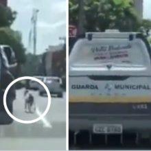 Cão perseguiu policiais que prenderam seu dono que mora na rua, ele os fez parar para acompanhá-lo