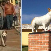 Cão que acompanhava velórios morre e recebe estátua em sua homenagem
