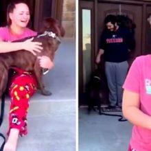 Garota cai em lágrimas quando seus pais adotam o seu cão favorito