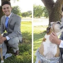 Jovem faz seu próprio baile com seu cão, depois que na escola foi cancelado
