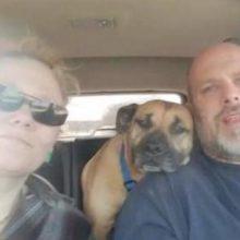 Deixaram a porta do carro aberta e um cão de rua entrou correndo e foi adotado