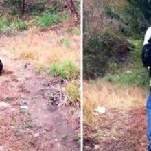 Filhote de cãozinho leva socorristas até o caminho onde seus irmãos estavam