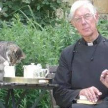 Gato é flagrado roubando leite do ministro durante transmissão on-line de oração