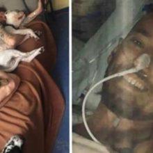 Homem pulou em um poço de enxofre para salvar seu cão e queimou 70% de seu corpo. Infelizmente não aguentou