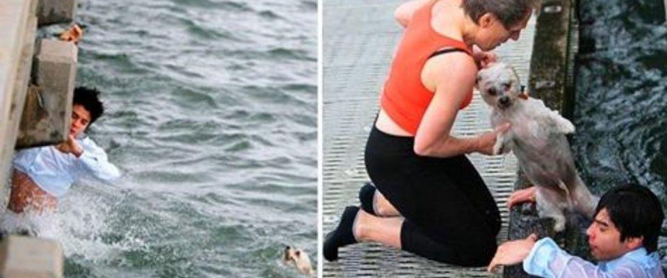 Jovem vê cachorro se afogando e não pensa duas vezes em pular e salvar ele