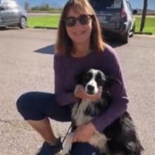 Mulher deixou o seu emprego e passou 57 dias tentando encontrar seu cão perdido