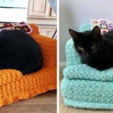 As pessoas estão usando seu tempo livre para fazer pequenos sofás de crochê para seus gatos