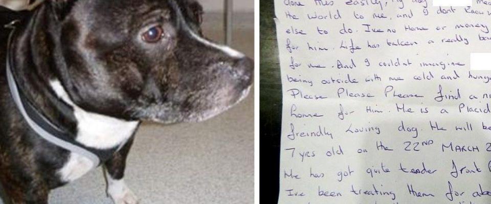 Cão é deixado dentro de uma igreja com carta de desculpas na coleira