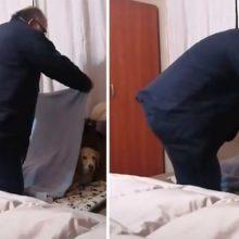 Esse pai não queria ter um cão, mas agora ele tem uma rotina muito doce com ele
