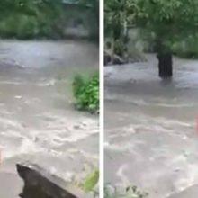 Homem pula na enxurrada de rio para poder salvar o seu cão de estimação