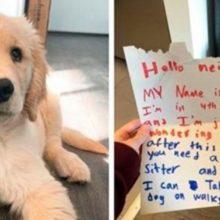 Menino de 10 anos pergunta a seus vizinhos se ele pode cuidar do seu cãozinho