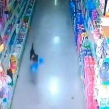 """Cachorro é pego pela câmera """"roubando"""" saco de pão em um supermercado"""