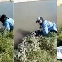 Coletor de lixo salva cão de afogamento e ele dá uma abraço emocionante