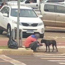 Emocionante : morador de rua ganha marmita e divide com seu cão