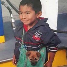 Garotinho comove ao carregar seu cão em um bolsa para acompanhar mãe vendedora ambulante