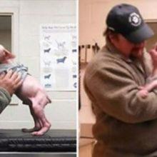 Homem Volta Para Adotar Cãozinho Que Resgatou : 'Ele Não Podia Ter Ficado Mais Feliz'