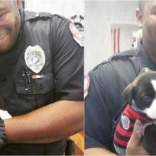 Policial Adota Cãozinho Abandonado Encontrado Em Vala – Me Apaixonei Por Ele